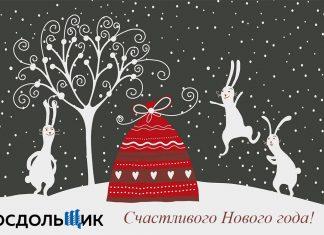 МосДольщик.рф поздравляет с новым 2019 годом!
